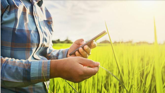 کشاورزان سبز آینده در حال یادگیری آنلاین هستند